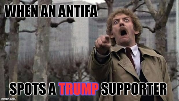 Antifa Insanity... When the anti fascists are the REAL fascists | WHEN AN ANTIFA SPOTS A TRUMP SUPPORTER TRUMP | image tagged in invasion of the body snatchers,antifa,trump | made w/ Imgflip meme maker