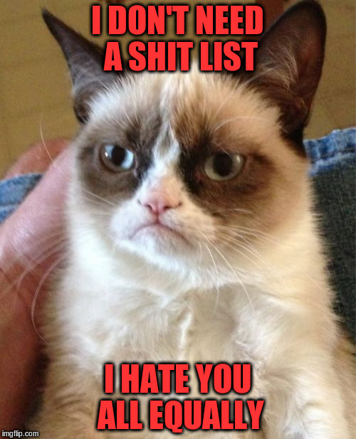 Grumpy Cat Meme | I DON'T NEED A SHIT LIST I HATE YOU ALL EQUALLY | image tagged in memes,grumpy cat | made w/ Imgflip meme maker