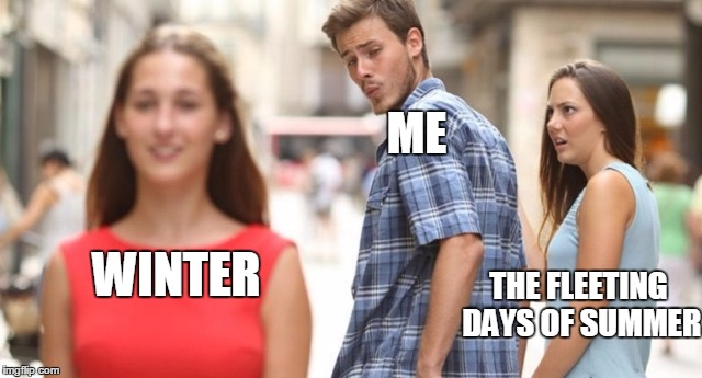 every year | ME WINTER THE FLEETING DAYS OF SUMMER | image tagged in winter | made w/ Imgflip meme maker