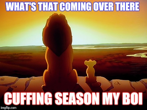 Lion King Meme | WHAT'S THAT COMING OVER THERE CUFFING SEASON MY BOI | image tagged in memes,lion king | made w/ Imgflip meme maker