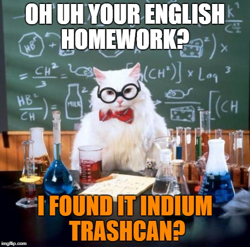 Chemistry Cat Meme | OH UH YOUR ENGLISH HOMEWORK? I FOUND IT INDIUM TRASHCAN? | image tagged in memes,chemistry cat | made w/ Imgflip meme maker