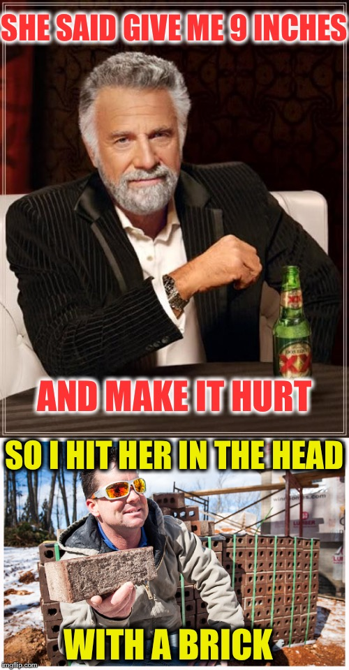 SHE SAID GIVE ME 9 INCHES AND MAKE IT HURT SO I HIT HER IN THE HEAD WITH A BRICK | image tagged in memes,the most interesting man in the world,funny,brick mason | made w/ Imgflip meme maker