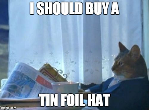 Be prepared |  I SHOULD BUY A; TIN FOIL HAT | image tagged in memes,i should buy a boat cat,tin foil hat,conspiracy theory | made w/ Imgflip meme maker