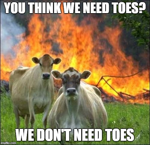 YOU THINK WE NEED TOES? WE DON'T NEED TOES | made w/ Imgflip meme maker
