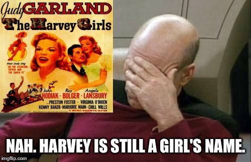 Captain Picard Facepalm Meme | NAH. HARVEY IS STILL A GIRL'S NAME. | image tagged in memes,captain picard facepalm | made w/ Imgflip meme maker