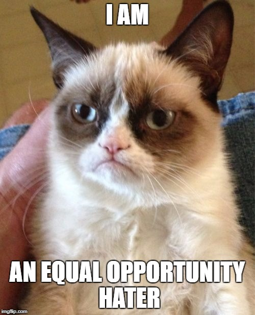 Grumpy Cat Meme | I AM AN EQUAL OPPORTUNITY HATER | image tagged in memes,grumpy cat | made w/ Imgflip meme maker