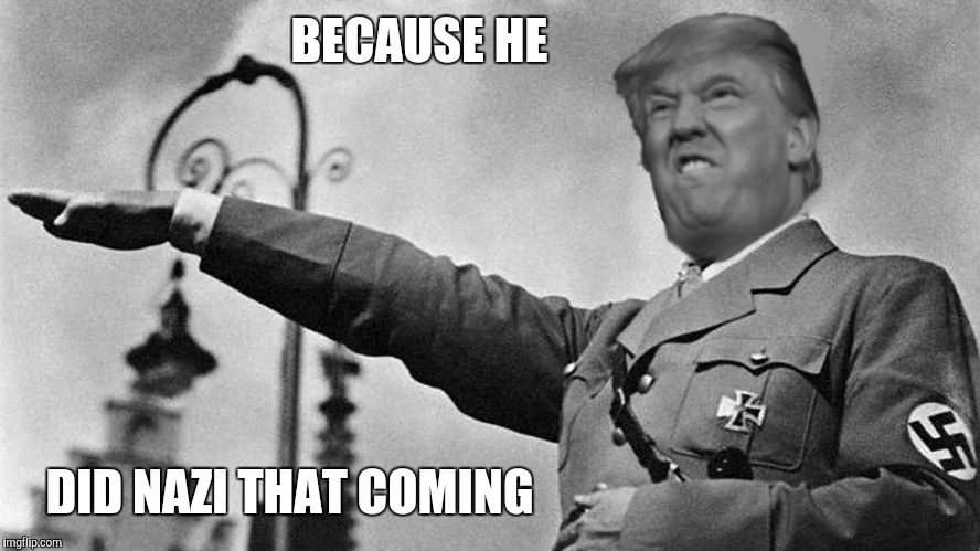 Donald Trump Hitler | BECAUSE HE DID NAZI THAT COMING | image tagged in donald trump hitler | made w/ Imgflip meme maker