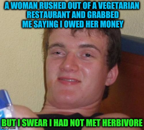 10 Guy Meme | A WOMAN RUSHED OUT OF A VEGETARIAN RESTAURANT AND GRABBED ME SAYING I OWED HER MONEY BUT I SWEAR I HAD NOT MET HERBIVORE | image tagged in memes,10 guy,funny,puns,vegetarian | made w/ Imgflip meme maker
