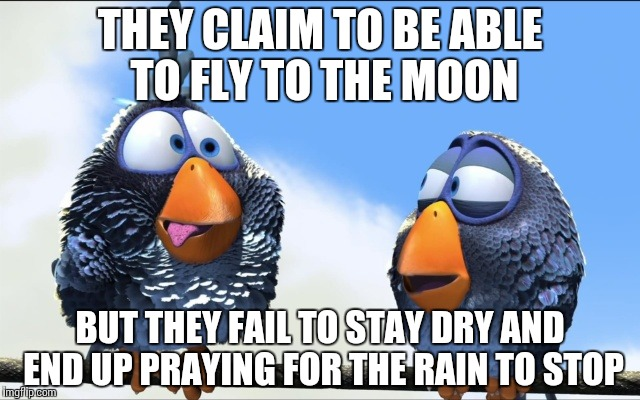 Blue Birds | THEY CLAIM TO BE ABLE TO FLY TO THE MOON BUT THEY FAIL TO STAY DRY AND END UP PRAYING FOR THE RAIN TO STOP | image tagged in blue birds | made w/ Imgflip meme maker