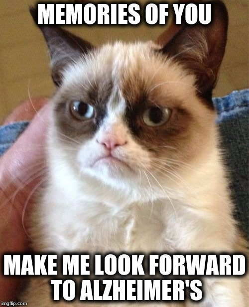 Grumpy Cat Meme | MEMORIES OF YOU MAKE ME LOOK FORWARD TO ALZHEIMER'S | image tagged in memes,grumpy cat | made w/ Imgflip meme maker