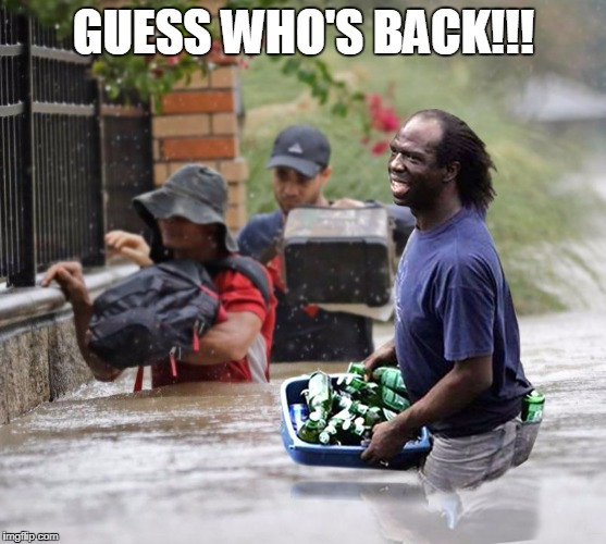 GUESS WHO'S BACK!!! | image tagged in katrina looter guess who's back | made w/ Imgflip meme maker