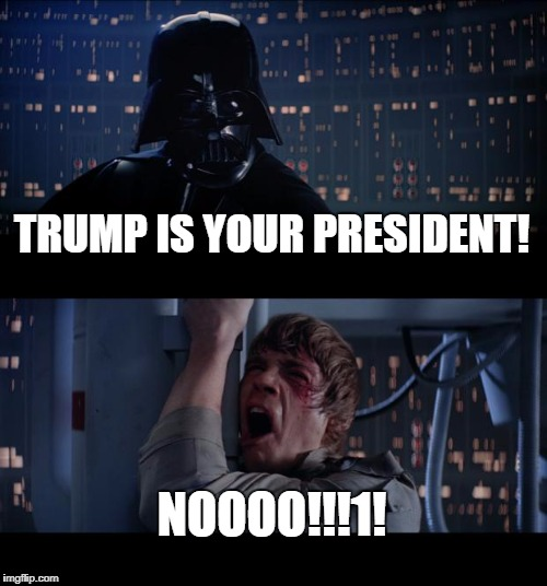 I may not be a fan of him but it's this constitution thing, you know... | TRUMP IS YOUR PRESIDENT! NOOOO!!!1! | image tagged in memes,star wars no | made w/ Imgflip meme maker