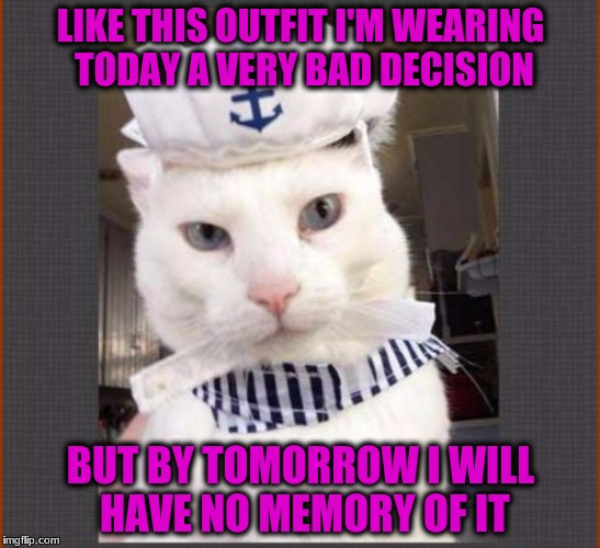 LIKE THIS OUTFIT I'M WEARING TODAY A VERY BAD DECISION BUT BY TOMORROW I WILL HAVE NO MEMORY OF IT | made w/ Imgflip meme maker