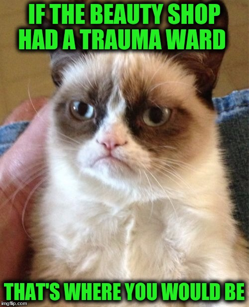 Grumpy Cat Meme | IF THE BEAUTY SHOP HAD A TRAUMA WARD THAT'S WHERE YOU WOULD BE | image tagged in memes,grumpy cat | made w/ Imgflip meme maker