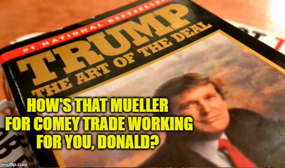 Dumbest Deal | HOW'S THAT MUELLER FOR COMEY TRADE WORKING FOR YOU, DONALD? | image tagged in dumb deal | made w/ Imgflip meme maker