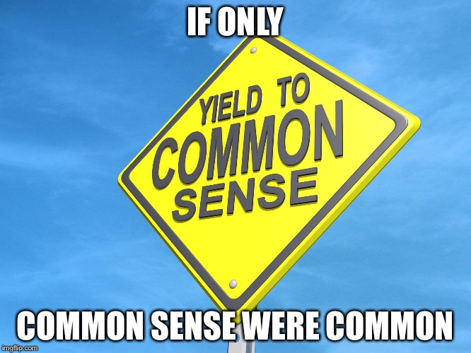 IF ONLY COMMON SENSE WERE COMMON | made w/ Imgflip meme maker