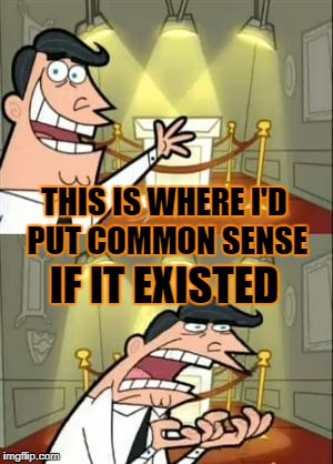 THIS IS WHERE I'D PUT COMMON SENSE IF IT EXISTED | made w/ Imgflip meme maker