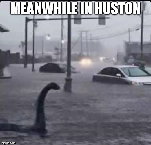 MEANWHILE IN HUSTON | image tagged in flood loch ness | made w/ Imgflip meme maker