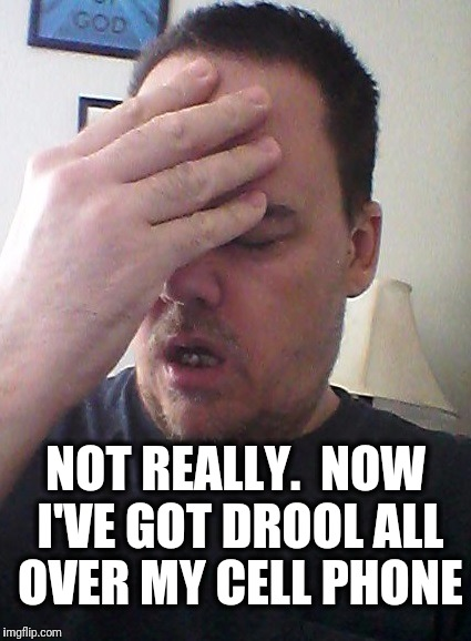 face palm | NOT REALLY.  NOW I'VE GOT DROOL ALL OVER MY CELL PHONE | image tagged in face palm | made w/ Imgflip meme maker