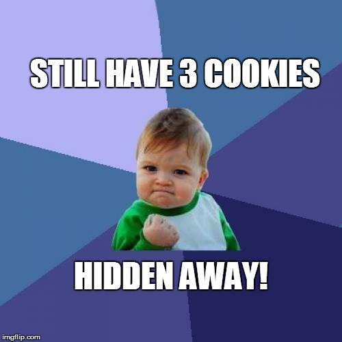 Success Kid Meme | STILL HAVE 3 COOKIES HIDDEN AWAY! | image tagged in memes,success kid | made w/ Imgflip meme maker