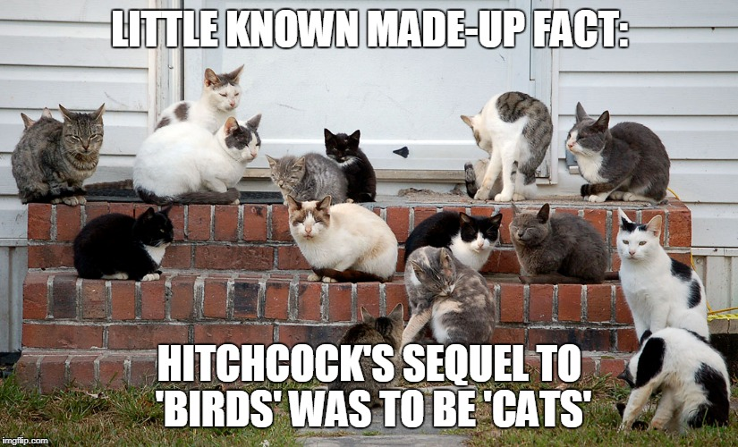 LITTLE KNOWN MADE-UP FACT: HITCHCOCK'S SEQUEL TO 'BIRDS' WAS TO BE 'CATS' | made w/ Imgflip meme maker