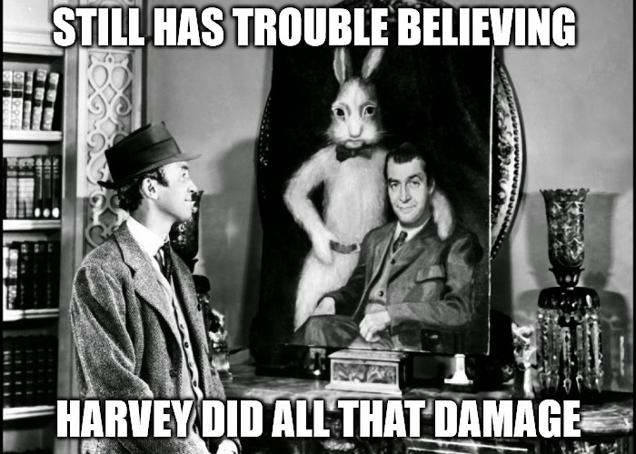 It was a nicer time back then | STILL HAS TROUBLE BELIEVING HARVEY DID ALL THAT DAMAGE | image tagged in harvey,jimmy stewart,pooka,hurricane | made w/ Imgflip meme maker