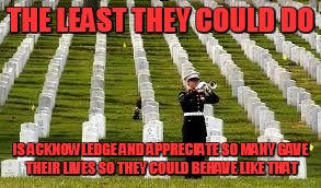 Military Cemetary | THE LEAST THEY COULD DO IS ACKNOWLEDGE AND APPRECIATE SO MANY GAVE THEIR LIVES SO THEY COULD BEHAVE LIKE THAT | image tagged in military cemetary | made w/ Imgflip meme maker