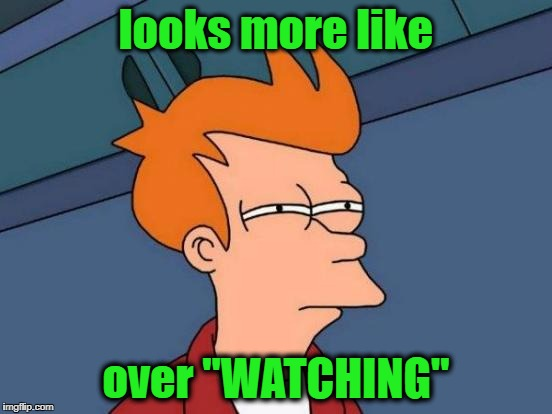 "Futurama Fry Meme | looks more like over ""WATCHING"" 