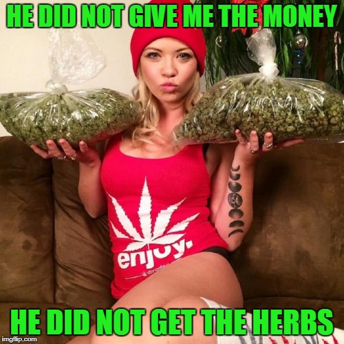 HE DID NOT GIVE ME THE MONEY HE DID NOT GET THE HERBS | made w/ Imgflip meme maker