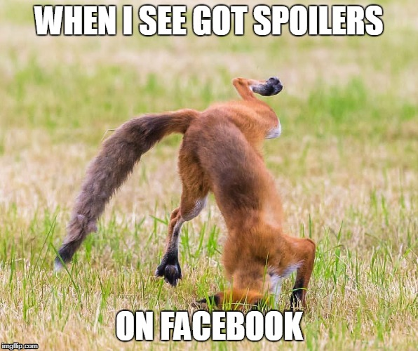 Fox Face Plant | WHEN I SEE GOT SPOILERS ON FACEBOOK | image tagged in no spoilers | made w/ Imgflip meme maker