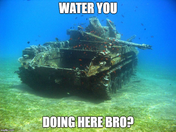 Fish Tank | WATER YOU DOING HERE BRO? | image tagged in fish tank | made w/ Imgflip meme maker