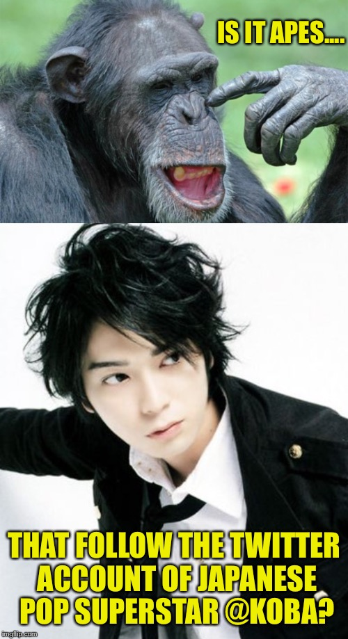 IS IT APES.... THAT FOLLOW THE TWITTER ACCOUNT OF JAPANESE POP SUPERSTAR @KOBA? | made w/ Imgflip meme maker