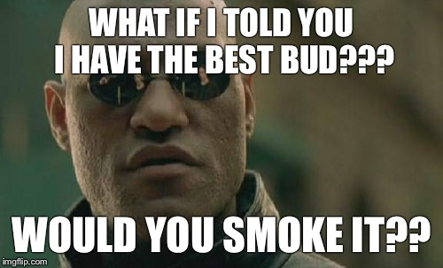 Matrix Morpheus Meme | WHAT IF I TOLD YOU I HAVE THE BEST BUD??? WOULD YOU SMOKE IT?? | image tagged in memes,matrix morpheus | made w/ Imgflip meme maker