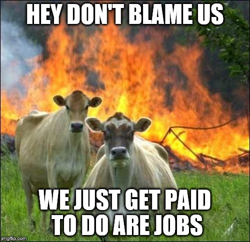 Evil Cows Meme | HEY DON'T BLAME US WE JUST GET PAID TO DO ARE JOBS | image tagged in memes,evil cows | made w/ Imgflip meme maker