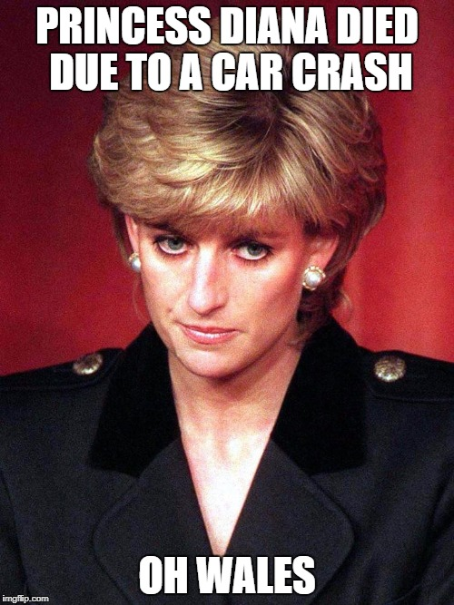 As The 20th Anniversary Of Princess Diana's Death, I Present You This Funny Pun | PRINCESS DIANA DIED DUE TO A CAR CRASH OH WALES | image tagged in princess,diana,pun,puns,wales,funny | made w/ Imgflip meme maker