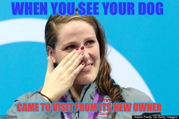WHEN YOU SEE YOUR DOG CAME TO VISIT FROM ITS NEW OWNER | image tagged in soo me | made w/ Imgflip meme maker