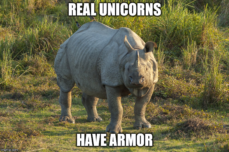 REAL UNICORNS HAVE ARMOR | image tagged in indian rhino | made w/ Imgflip meme maker