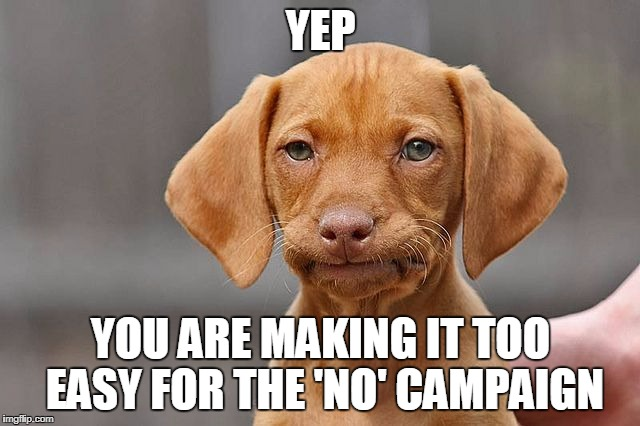 Kinda Done Dog | YEP YOU ARE MAKING IT TOO EASY FOR THE 'NO' CAMPAIGN | image tagged in kinda done dog | made w/ Imgflip meme maker