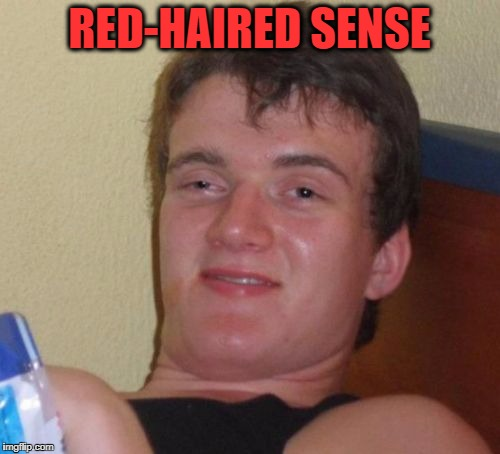 10 Guy Meme | RED-HAIRED SENSE | image tagged in memes,10 guy | made w/ Imgflip meme maker