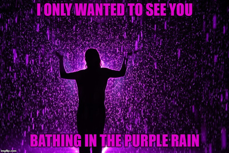 I ONLY WANTED TO SEE YOU BATHING IN THE PURPLE RAIN | made w/ Imgflip meme maker
