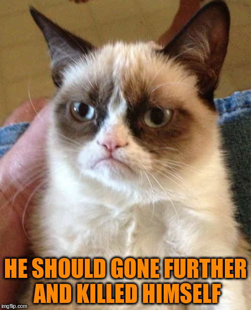 Grumpy Cat Meme | HE SHOULD GONE FURTHER AND KILLED HIMSELF | image tagged in memes,grumpy cat | made w/ Imgflip meme maker