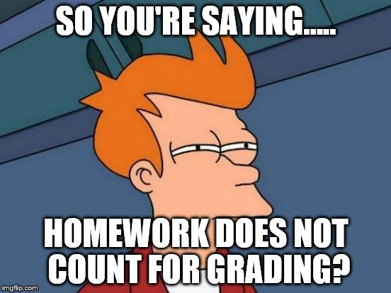 Futurama Fry Meme | SO YOU'RE SAYING..... HOMEWORK DOES NOT COUNT FOR GRADING? | image tagged in memes,futurama fry | made w/ Imgflip meme maker