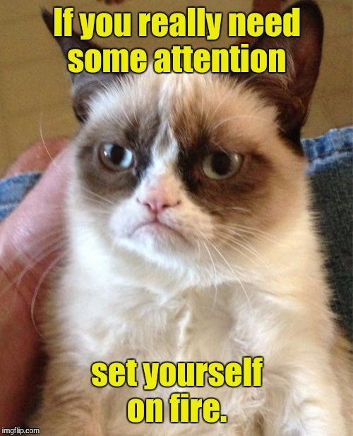 Grumpy Cat Meme | If you really need some attention set yourself on fire. | image tagged in memes,grumpy cat | made w/ Imgflip meme maker