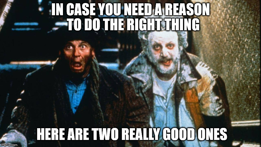 The Reasons | IN CASE YOU NEED A REASON  TO DO THE RIGHT THING HERE ARE TWO REALLY GOOD ONES | image tagged in i'm with stupid,i am the bigger idiot,idiots,special kind of stupid,dumb and dumber,doing the right things | made w/ Imgflip meme maker