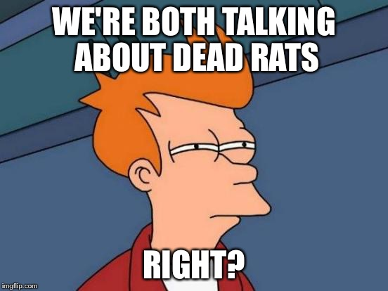 Futurama Fry Meme | WE'RE BOTH TALKING ABOUT DEAD RATS RIGHT? | image tagged in memes,futurama fry | made w/ Imgflip meme maker