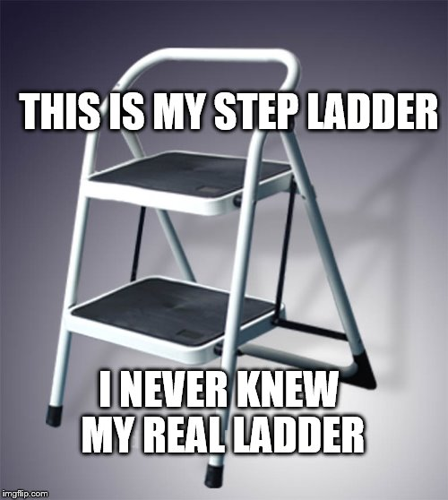 Step Ladder | THIS IS MY STEP LADDER I NEVER KNEW MY REAL LADDER | image tagged in step ladder,funny meme | made w/ Imgflip meme maker