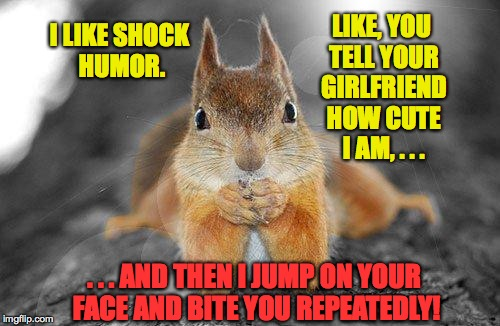 It's Nature's way. | I LIKE SHOCK HUMOR. LIKE, YOU TELL YOUR GIRLFRIEND HOW CUTE I AM, . . . . . . AND THEN I JUMP ON YOUR FACE AND BITE YOU REPEATEDLY! | image tagged in memes,surprise motherfucker,funny,squirrel | made w/ Imgflip meme maker