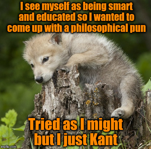 Confession Pup | I see myself as being smart and educated so I wanted to come up with a philosophical pun Tried as I might but I just Kant | image tagged in confession pup,memes,immanuel kant,philosophy,puns,funny | made w/ Imgflip meme maker