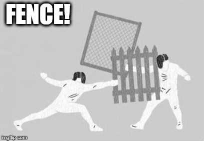 That meme is an ofFENCE ... maybe! | FENCE! | image tagged in fence,memes,funny,sport | made w/ Imgflip meme maker