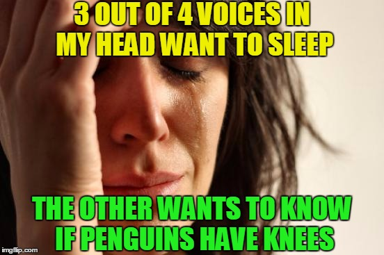 I wish I could sleep but my ADD kicks in ... 1 sheep, 2 sheep, cow, turtle, duck, Old McDonald had a farm - hey Macarena! | 3 OUT OF 4 VOICES IN MY HEAD WANT TO SLEEP THE OTHER WANTS TO KNOW IF PENGUINS HAVE KNEES | image tagged in memes,first world problems,funny,sleep,penguins,animals | made w/ Imgflip meme maker